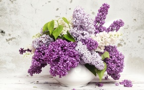 Picture leaves, vase, lilac