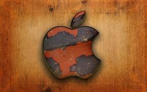 Picture computer, tree, apple, Apple, logo, mac, phone, laptop, emblem, gadget