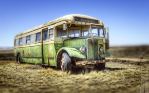 Picture field, style, background, bus