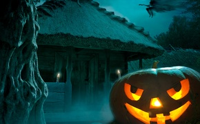 Picture Happy, holiday, Halloween, moon, pumpkin, hounted house, the full moon, fear, witch, night, night, Halloween, ...