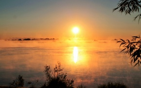 Picture the sun, fog, river, sunrise, morning