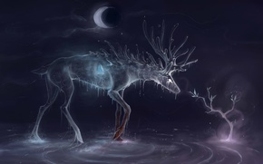 Picture water, drops, tree, the moon, butterfly, spirit, a month, deer, art
