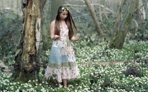 Picture forest, girl, spring
