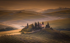 Picture field, home, morning, Italy, Tuscany