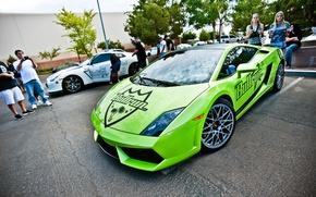 Picture Lamborghini, supercar, Gallardo, Lamborghini, galardo