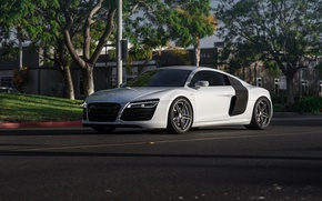 Picture Audi, wheels, v10, HRE, lower, on, r8