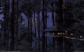 Picture forest, houses, bridges