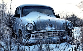 Picture snow, Muscovite, 407