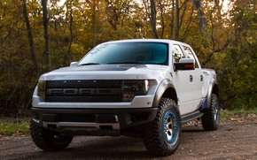 Picture machine, Ford, Ford, the front, F-150, SVT Raptor, Roush