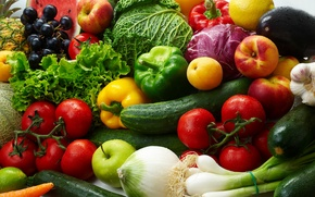 Picture tomatoes, lemon, vegetables, apricots, cabbage, paprika, cucumbers, salad, nectarines, zucchini, fruit, eggplant, apples, grapes, bow