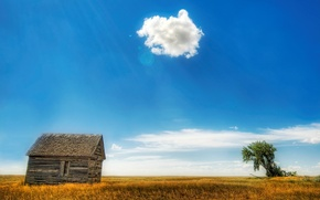 Picture field, clouds, house, tree, 153