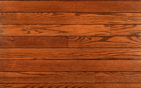 Picture Tree, flooring, Board, brown