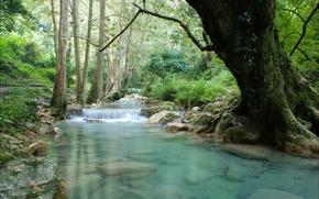 Wallpaper trees, stones, waterfall, river, the bridge