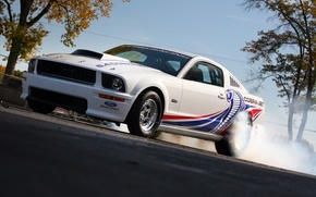 Wallpaper Mustang, Ford, Cobra, Jet, 5.4