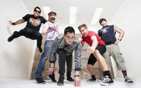 Picture Pop Punk, Zebrahead, Ed Udhus, Matty Lewis, Dan Palmer, Ben Osmundson, Ali Tabatabaei