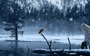 Picture winter, snow, lake, owl, wolf, art