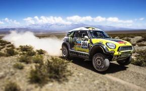 Picture Auto, Mini, Yellow, Sport, Race, Day, Mini Cooper, Dakar, SUV, Rally, Mini, 2014, X-raid, 304