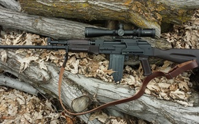 Picture weapons, Vepr-12, optics, self-loading, smoothbore, carabiner