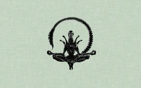 Picture minimalism, stranger, the Lotus position