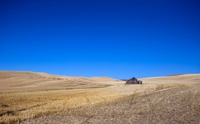 Picture field, the sky, house