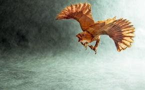 Wallpaper paper, bird, origami