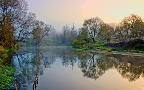 Picture autumn, trees, fog, river, Bank