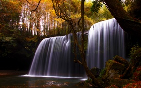 Picture autumn, trees, nature, river, waterfall