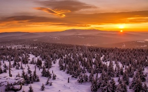 Picture winter, the sky, clouds, trees, sunset, mountains