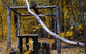 Wallpaper autumn, forest, gazebo