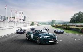 Picture car, Jaguar, retro, track, F-Type, Project 7, D-Type
