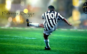 Picture Juventus, Juventus, Roberto Baggio, The Divine Ponytail, Roberto Baggio, A dozen, Italian