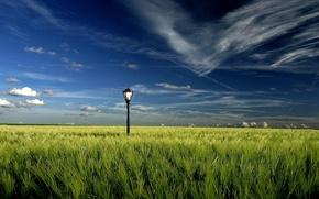 Wallpaper lantern, field, clouds