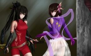 Picture girls, wall, sword, katana, art, angle, crack
