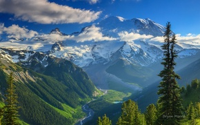 Wallpaper forest, the sky, mountains, valley