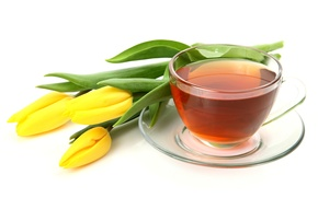 Picture flowers, glass, tea, Cup, tulips, saucer, white background, yellow
