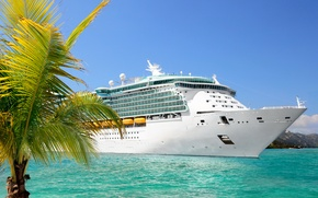 Picture palm trees, photo, ship, cruise liner