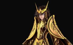 Picture gold saint, andromeda, Shun