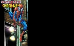 Picture post, lights, black background, superhero, comic, Marvel Comics, Spider-Man, Peter Parker, Peter Parker, Spider-Man, Marvel