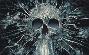 Wallpaper line, skull, vector, geometry