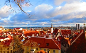 Picture roof, Estonia, Tallinn, roofs, Tallinn, Vyshgorod