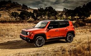 Picture Jeep, Trailhawk, 2015, Renegade