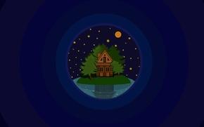 Picture trees, night, lake, house, island, stars, minimalism