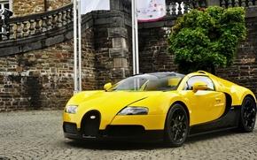 Picture Bugatti, Veyron, 2012, Yellow, Bugatti Veyron, Bugatti Veyron. Black, Yellow Veyron