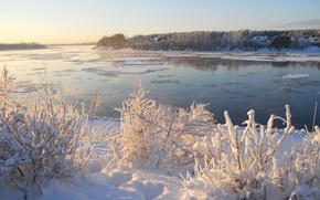 Picture ice, winter, the sky, snow, trees, river