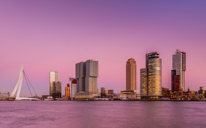 Picture the sky, bridge, the city, river, skyscrapers, pink, Netherlands, Rotterdam