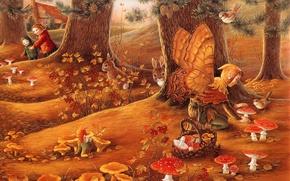 Wallpaper mushrooms, rabbits, Amanita