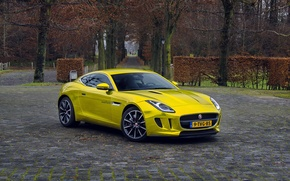 Picture gold, jaguar, coupe, f-type