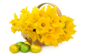 Picture flowers, basket, flowers, daffodils, spring, eggs, easter, bouquet, daffodils