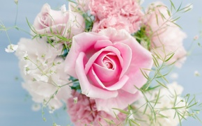 Picture flowers, pink, rose, color, bouquet, light, rose, pink, flowers