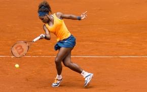 Wallpaper tennis, court, Serena Williams